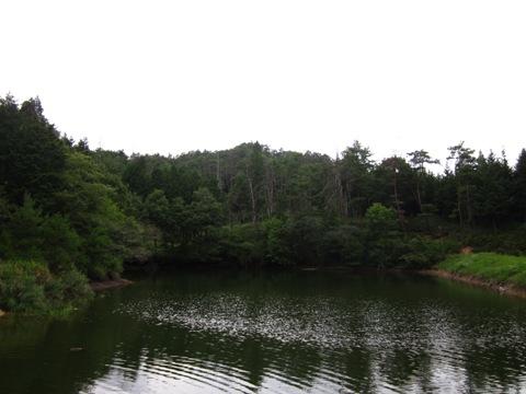201009080.JPG