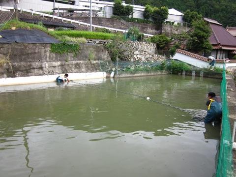 201009097.JPG