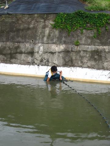 201009098.JPG